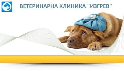 Изгрев - Ветеринарна Клиника град Бургас