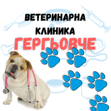 Гергьовче - Ветеринарна клиника град Враца