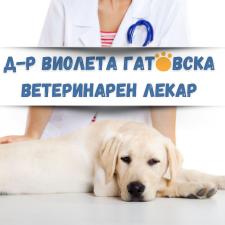 Д-р Виолета Гатовска Ветеринарен лекар