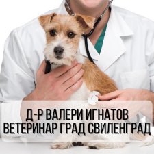 Д-р Валери Игнатов - Ветеринар град Свиленград
